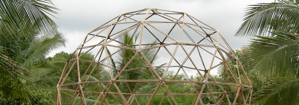 Wonder Grass: Geodesic Bamboo Dome